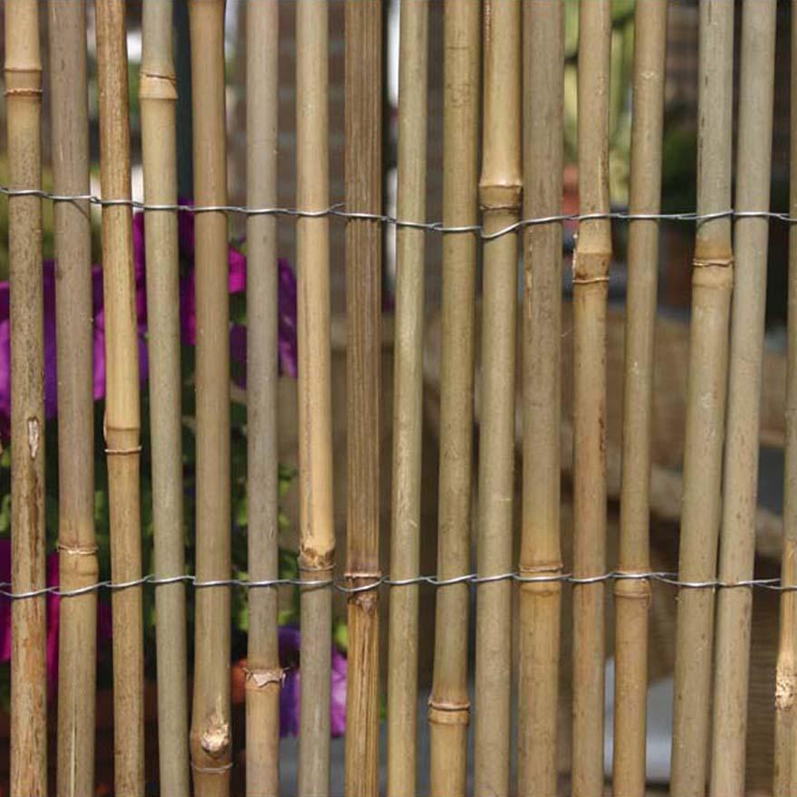 Arelle in bamboo pannelli termoisolanti for Vendita bambu